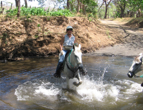 Let your horse splash in Costa Ricas rivers. / Lass Dein Pferd in Costa Ricas Flüssen spielen.