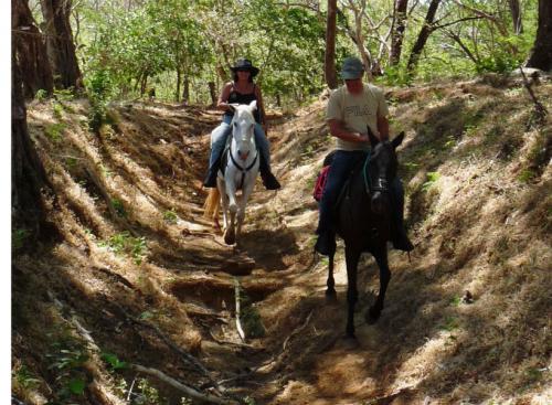 Wanderreiten-in-Costa-Rica.jpg