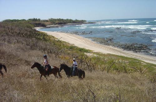 Horseback riding vacations in Costa Rica. / Die Schönheiten von Costa Ricas Küste auf dem Pferderücken entdecken.