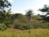 Scenic panorama views on the horseback trails in Guanacaste. / Aussichten über die Weiden und Felder der Guanacaste beim Wanderreiten.