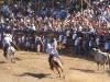 Good job from horse and rider at the fiestas. / Pferd und Reiter leisten ganze Arbeit auf der Fiesta.