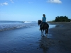 Discover lonesome beaches in your equestrian vacation in Costa Rica. / Einsamme Strände im Reiturlaub in Costa Rica entdecken.