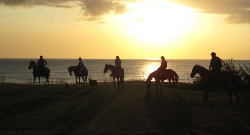 Sunset ride at Paradise Riding./ Die Ausritte zum Sonnenuntergang sind im Paradies spektakulär.