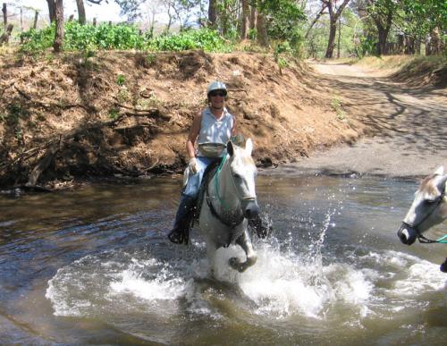 Let your horse splash in Costa Ricas rivers. / Lass Dein Pferd in Costa Ricas Flüssen spielen.