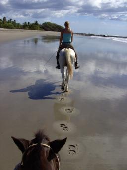 Wanderreiten an einsamen Stränden Costa Ricas - so schön kann Reiterurlaub sein. / Cross country riding at stunning beaches in Costa Rica.