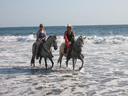 Western trails at the Costa Rican coastline. / Wanderreiten an der Küste Costa Ricas