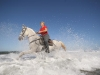 Horseback in Costa Rica: Canter in the surf. / Wellenreiten vom Feinsten in Costa Rica.