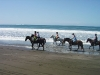 Western trails at the coast. / Spaß haben und andere Pferdeliebhaber treffen, Reiturlaub macht Träume wahr.