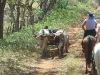 Oxcarts meeting Paradise Riders. / Einheimische mit Ochsenwagen treffen auf Reiturlauber.