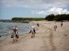 Western riding at the beaches of Costa Rica. / Reiterferien am Strand für Anfänger oder fortgeschrittene Reiter.