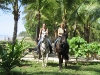 Horseback riding vacations like a dream. Ein Traum in grün: Reiterferien im tropischen Playa Junquillal.
