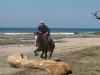 Cross Country Jumping in Costa Rica over driftwood. / Geländereiten am Strand in Costa Rica, Sprung inklusive.
