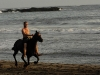 Canter at the beach in Costa Rica - horse and rider in the surf.  ||    Strandgalopp in Costa Rica - Pferd und Reiter in den Wellen.