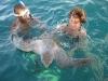 Swim with the turtles. / Schwimmen mit den Schildkröten.